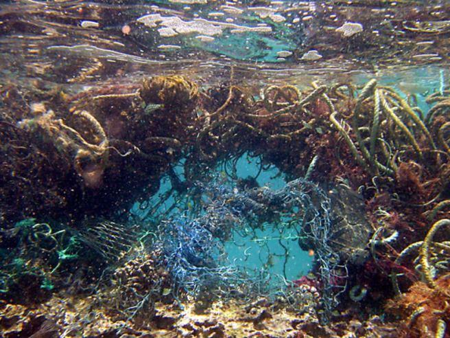 Isla Basuta Pacífico