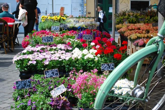 Copenhague Flores