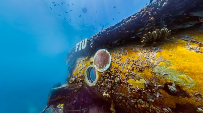 Aquarius Reef Base, Florida Keys - United States of America
